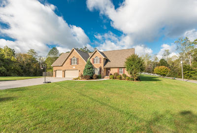 Strawberry Plains Single Family Home For Sale: 141 Mill Chase Drive