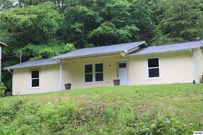 Sevierville Single Family Home For Sale: 2247 Fawn View Drive