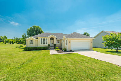 Sweetwater Single Family Home For Sale: 205 Christianburg Road