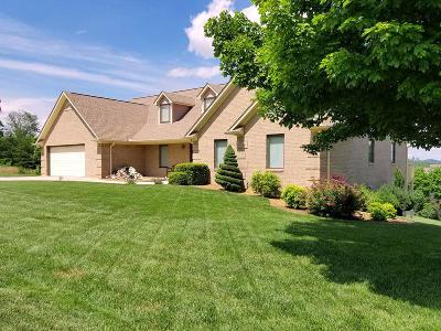 Dandridge Single Family Home For Sale: 415 Riverbend Drive