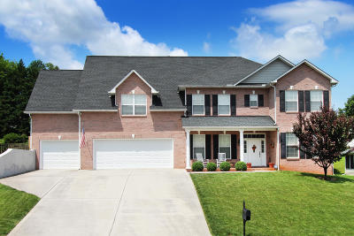 Knoxville Single Family Home For Sale: 1217 Walnut Branch Lane