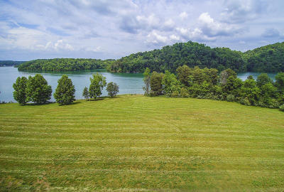 Alcoa, Friendsville, Greenback, Knoxville, Louisville, Maryville, Lenoir City, Vonore Residential Lots & Land For Sale: 250 Bay Pointe Rd