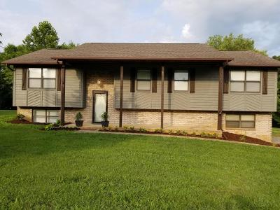 Single Family Home For Sale: 2917 Megan Drive