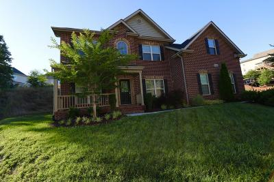 Knoxville Single Family Home For Sale: 1815 Moss View Lane