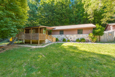 Powell Single Family Home For Sale: 3217 Long Hollow Rd