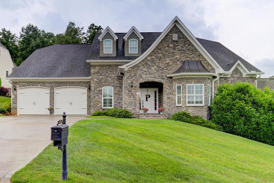 Knoxville Single Family Home For Sale: 1201 Anthem View Lane