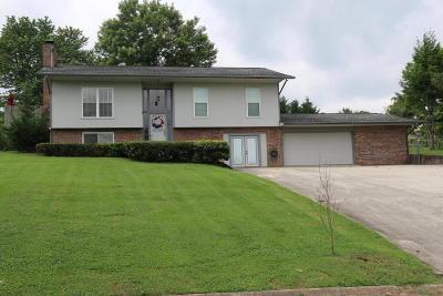 Kodak Single Family Home For Sale: 228 Ironwood Drive
