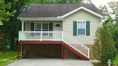 Pigeon Forge Single Family Home For Sale: 818 Plantation Drive