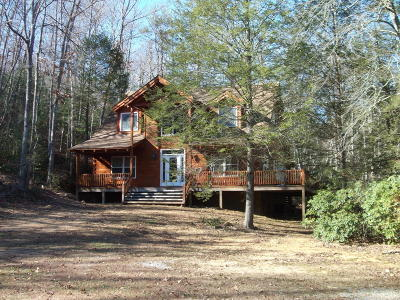 Tellico Plains Single Family Home For Sale: 166 Barney Creek Rd