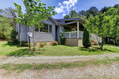 Sevierville Single Family Home For Sale: 1819 Allen Way