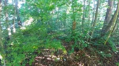 Anderson County Residential Lots & Land For Sale: Timbercrest Drive