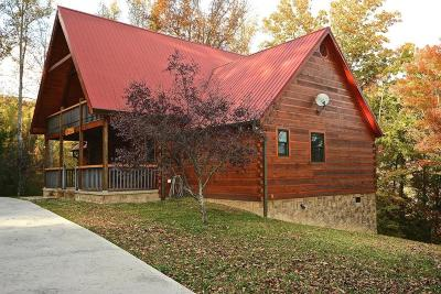Sevierville Single Family Home For Sale: 3002 Waldens Creek Rd