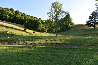 Single Family Home For Sale: 4925 Mulberry Gap Rd