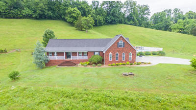 Grainger County Single Family Home For Sale: 3115 Dutch Valley Rd