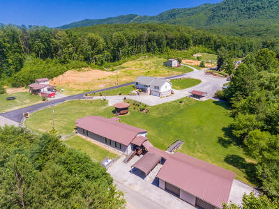 Blount County Single Family Home For Sale: 3110 Allegheny Loop Rd