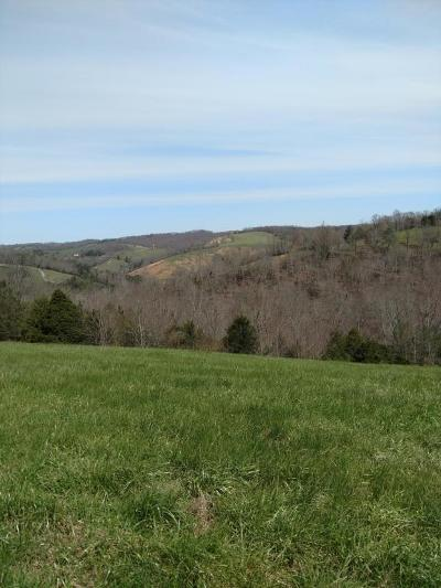 Claiborne County Residential Lots & Land For Sale: Lot 19 Smokey Quartz Blvd