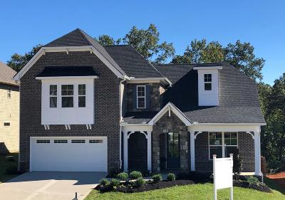 Knoxville Single Family Home For Sale: 10658 Trulock Lane