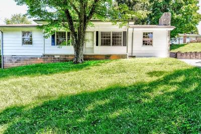 Lafollette Single Family Home For Sale: 194 McKinney Rd