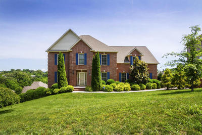 Knoxville Single Family Home For Sale: 3525 Hubbs Crossing Lane
