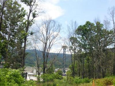 Gatlinburg Residential Lots & Land For Sale: 110 W Holly Ridge Rd