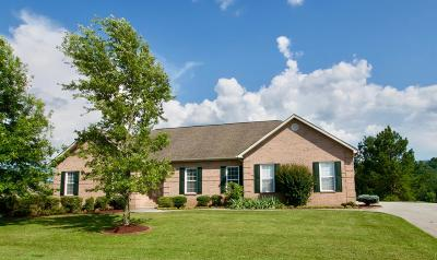 Maryville Single Family Home For Sale: 1120 Cobble Way