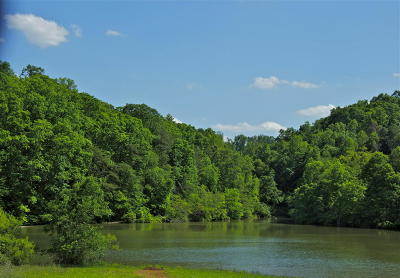 Anderson County, Blount County, Knox County, Loudon County, Roane County Residential Lots & Land For Sale: 202 Oologila Place