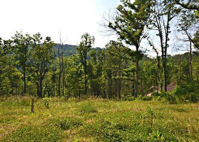 Gatlinburg Residential Lots & Land For Sale: 443 W Loop Rd