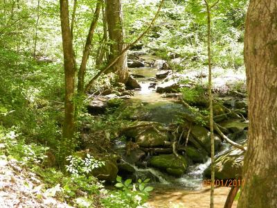 Sevierville Residential Lots & Land For Sale: 2943 Laurel Creek Rd
