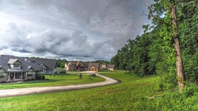 Friendsville, Greenback, Louisville, Maryville, Sevierville, Tallassee, Townsend, Townsend/walland, Vonore, Walland Residential Lots & Land For Sale: Lot 145 Timberhead Lane