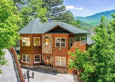 Gatlinburg Single Family Home For Sale: 449 Campbell Lead