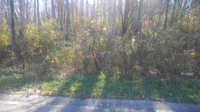 Anderson County, Campbell County, Claiborne County, Grainger County, Union County Residential Lots & Land For Sale: 108 Old Hickory Court