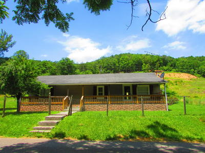 Rogersville Single Family Home For Sale: 351 Poor Valley Rd