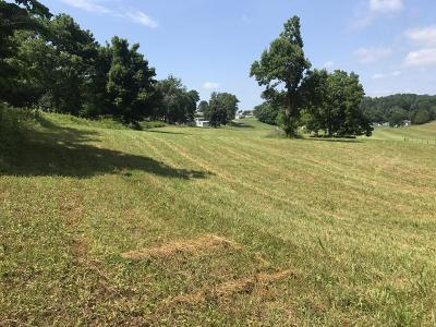 Anderson County, Campbell County, Claiborne County, Grainger County, Hancock County, Hawkins County, Jefferson County, Union County Residential Lots & Land For Sale: Dumplin Loop Rd Rd