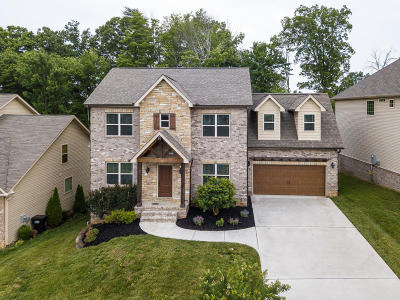 Knoxville Single Family Home For Sale: 1325 Sloping Hill Ln