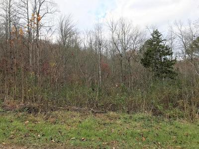 Anderson County, Campbell County, Claiborne County, Grainger County, Union County Residential Lots & Land For Sale: Big Sinks Rd