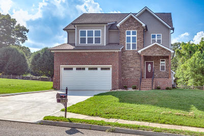 Knoxville Single Family Home For Sale: 6041 Stratford Park Blvd