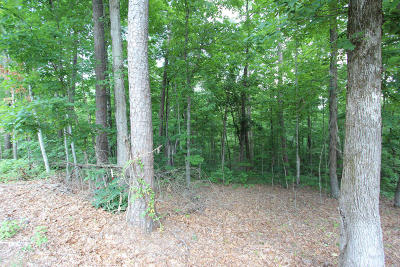 Sevierville Residential Lots & Land For Sale: Lot 31 Smokey Mountain Queen Rd