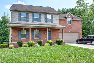 Knoxville Single Family Home For Sale: 6811 Audrianna Lane