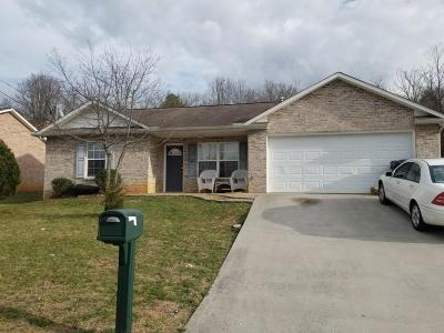 Knoxville Single Family Home For Sale: 1844 Tillery Square Lane