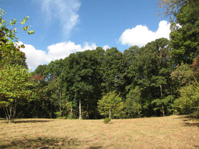 Loudon County Residential Lots & Land For Sale: 430 Fog Hill Lane
