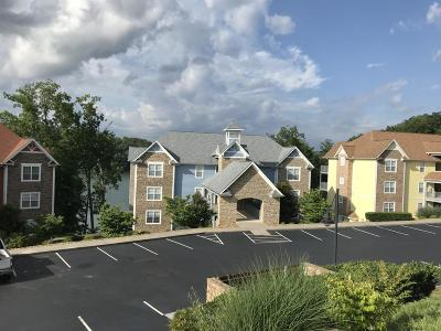 Anderson County Condo/Townhouse For Sale: 642 Pinnacle Point