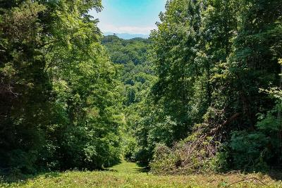 Sevierville Residential Lots & Land For Sale: P34 Reed Schoolhouse Rd