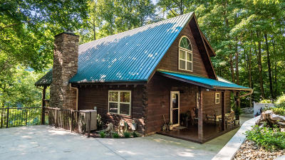 Campbell County Single Family Home For Sale: 206 Hiawatha Lane