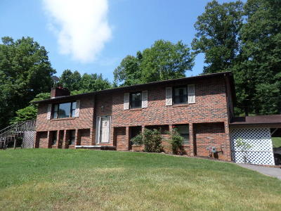 Anderson County Single Family Home For Sale: 107 Skyland Lane