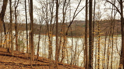 Anderson County, Campbell County, Claiborne County, Grainger County, Union County Residential Lots & Land For Sale: Lot 53 Stoney Rock Lane