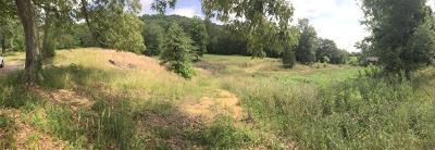 Anderson County, Campbell County, Claiborne County, Grainger County, Union County Residential Lots & Land For Sale: 265 Bull Run Rd