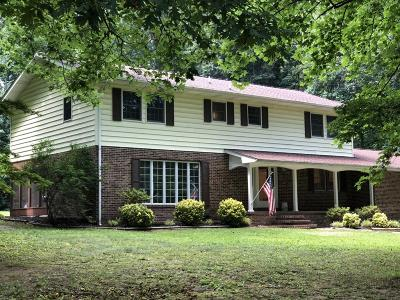 Corryton Single Family Home For Sale: 9833 Rutledge Pike