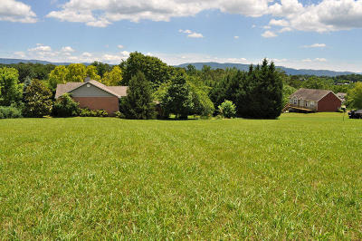 Seymour Residential Lots & Land For Sale: Lot 27 Springtime Tr