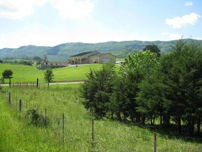 Speedwell TN Single Family Home For Sale: $2,500,000
