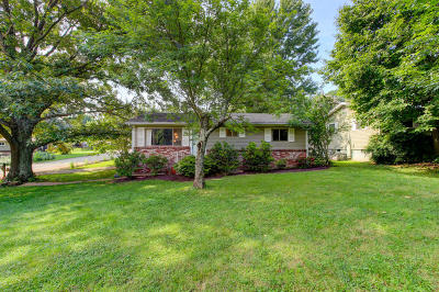 Knoxville Single Family Home For Sale: 1732 Hillwood Drive
